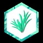 Team Eternal Logo